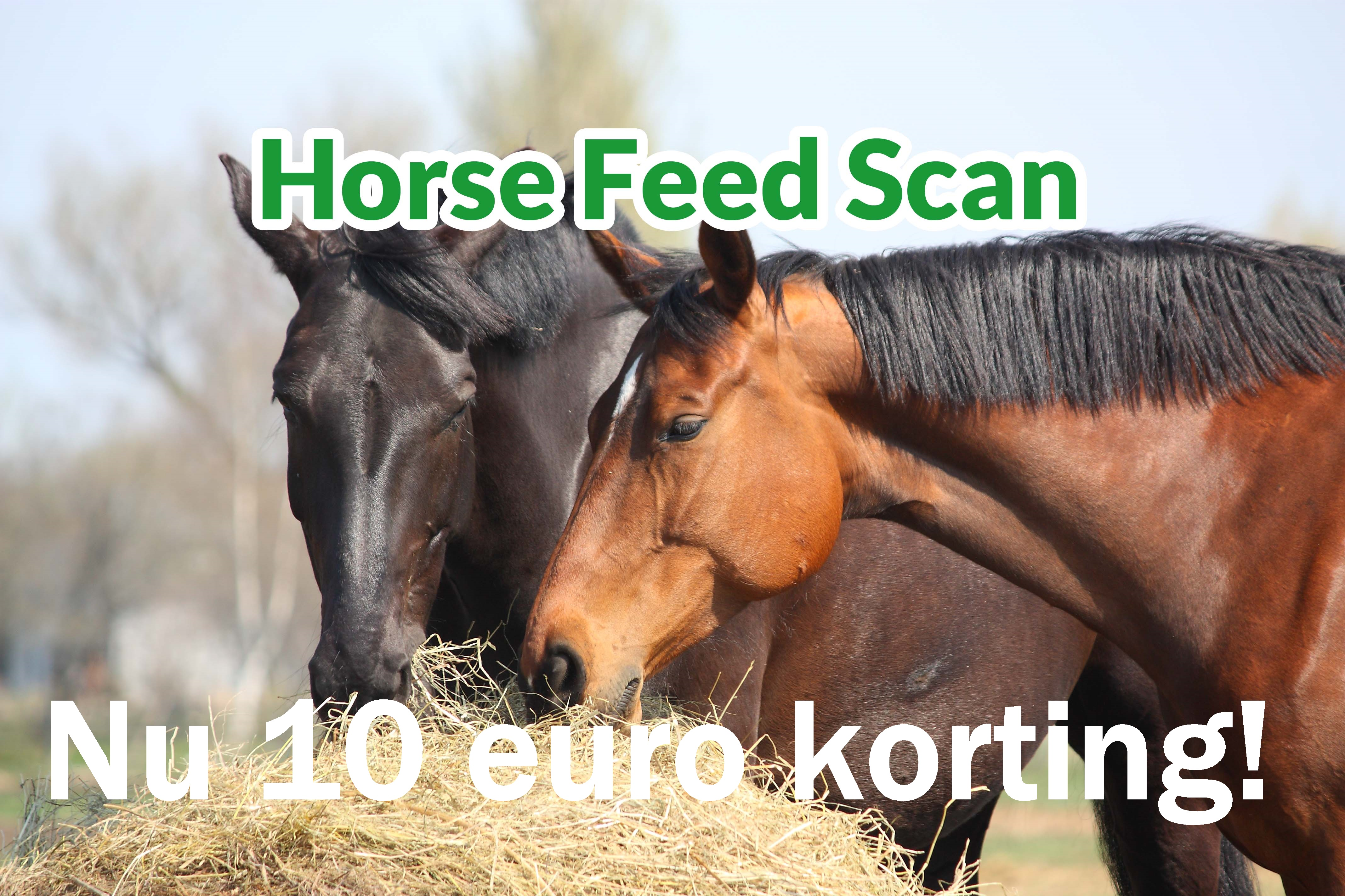 Korting op analyse Horse Feed Scan